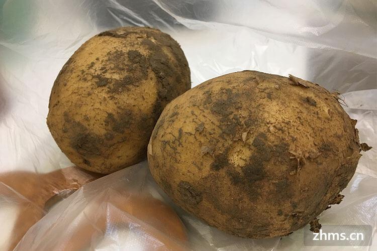 土豆能放冰箱吗?土豆要如何保存?