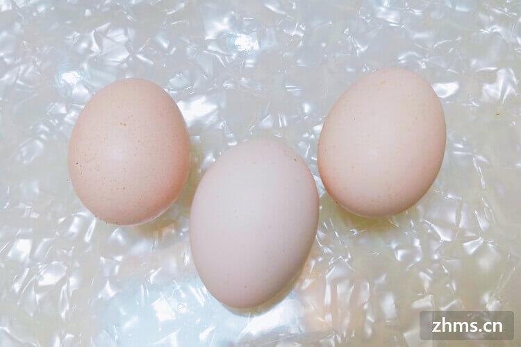 雞蛋殼屬于什么垃圾