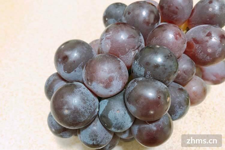 吃葡萄不吐葡萄皮,不吃葡萄倒吐葡萄皮,对于葡萄你了解多少呢