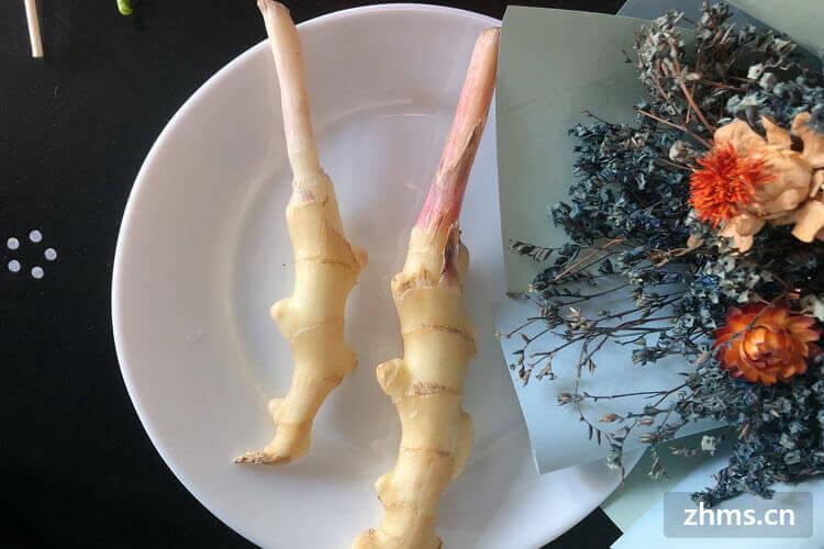 子姜怎么腌制泡菜,子姜怎么腌制好吃