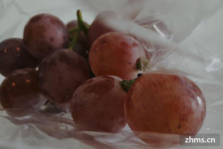 葡萄怎么种植