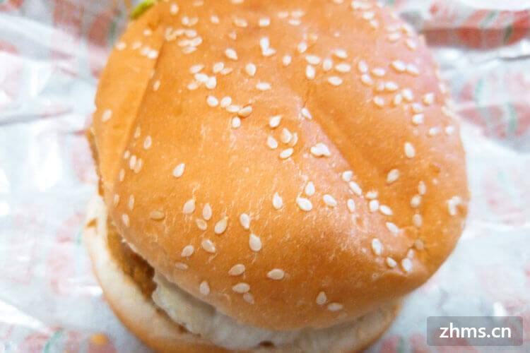 快餐汉堡店加盟价格大体上是多少钱呢?这一类的加盟店赚钱吗?