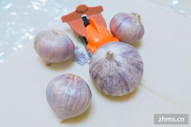 大蒜发芽温度是多少?大蒜怎么保存不发芽?