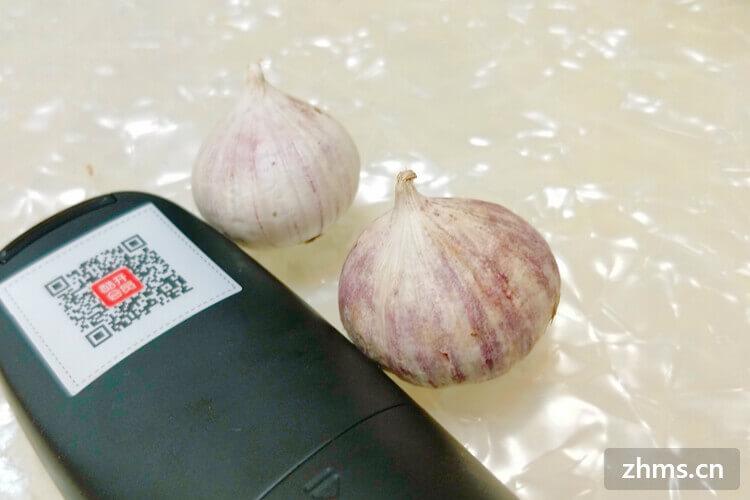 如何保存大蒜,正确的方法能让大蒜干爽圆润