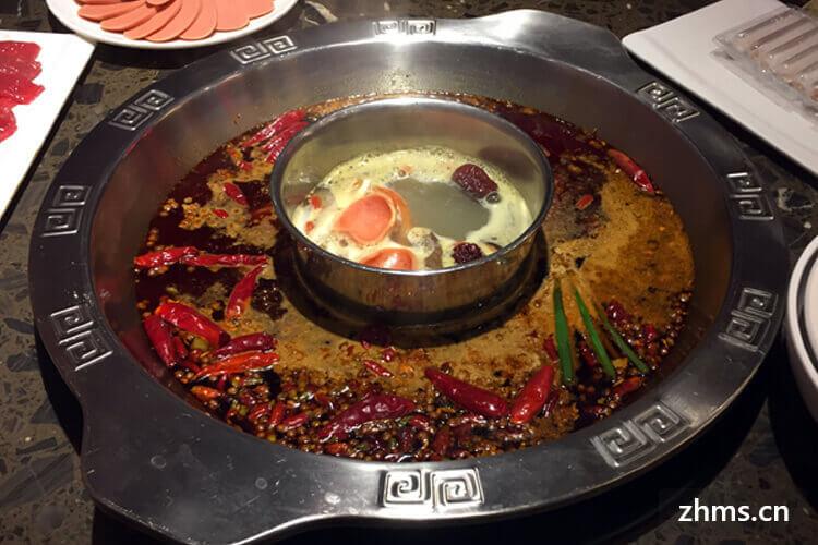 郑州开一家巴奴火锅多少钱?一起了解一下吧