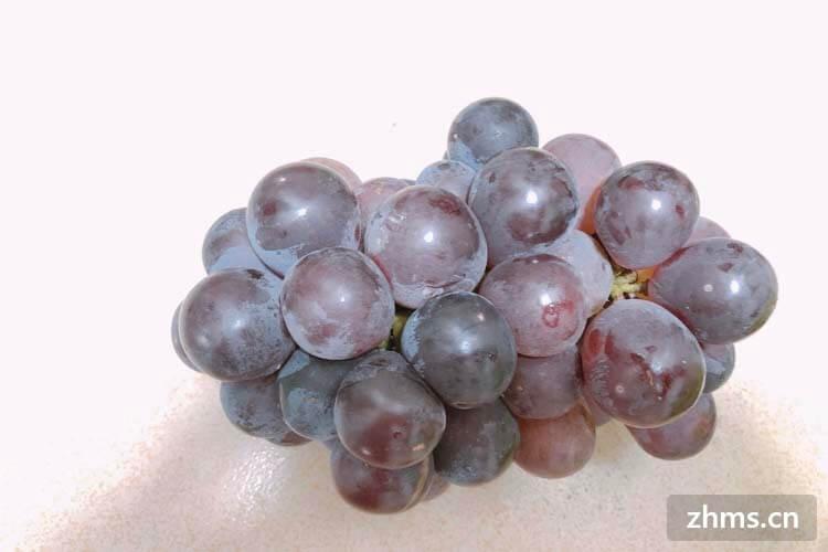夏黑葡萄与巨峰葡萄有区别吗