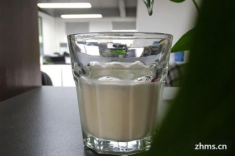 一只酸奶牛怎么加盟