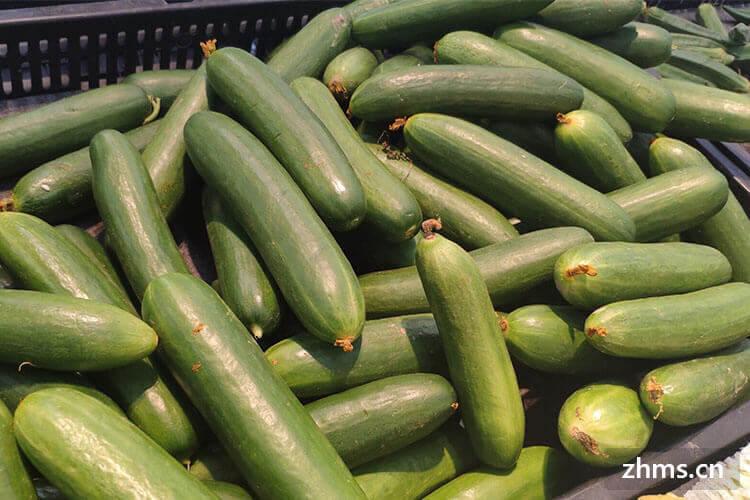 早上吃黄瓜可以减肥吗,应该怎么吃黄瓜效果最好