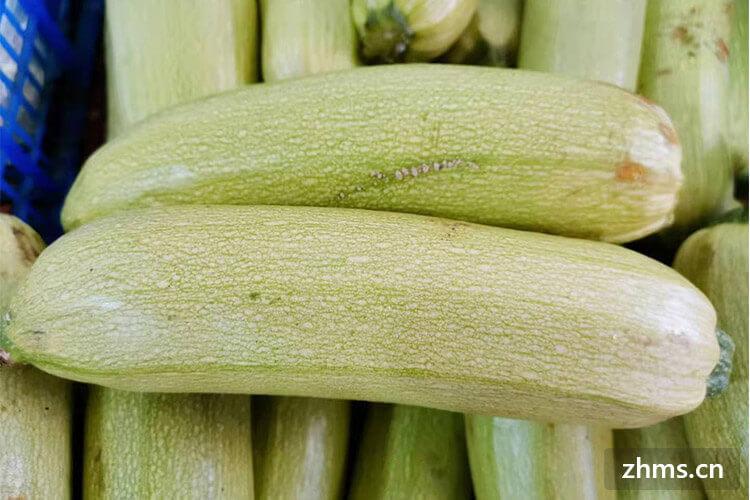 西葫芦的名字的意义和吃法