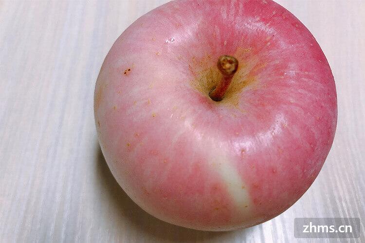 九月有哪些水果成熟