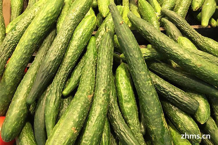 广州反季节蔬菜市面都有啥?不是这个月成熟的菜也能吃啦