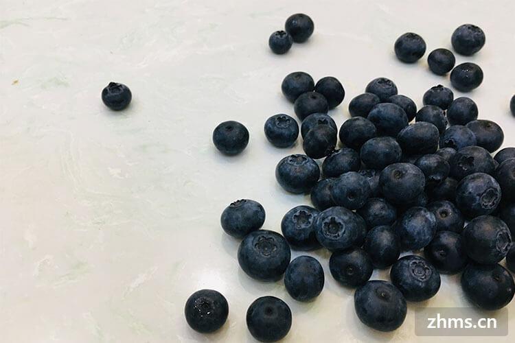 藍莓多少錢一斤?藍莓為什么那么貴呢?