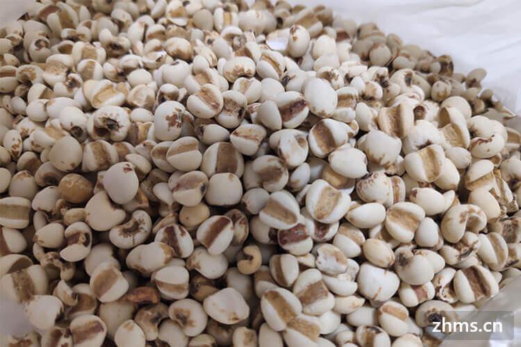 薏米营养价值高,薏米粥的做法