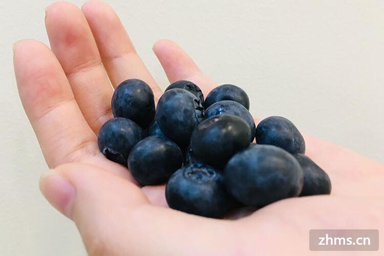 蓝莓怎么洗?它值得被小心对待!