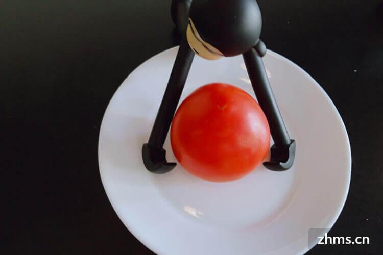 蘿卜西紅柿可以做成什么美食呢