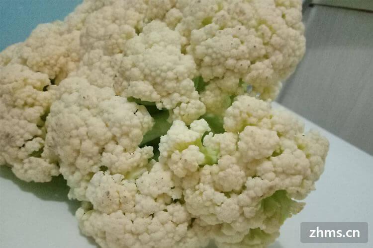 花菜用中文可以说是菜花、花椰菜,那么花菜英语怎么说呢?