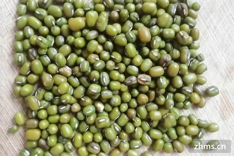 发芽的绿豆还能做绿豆糕吗