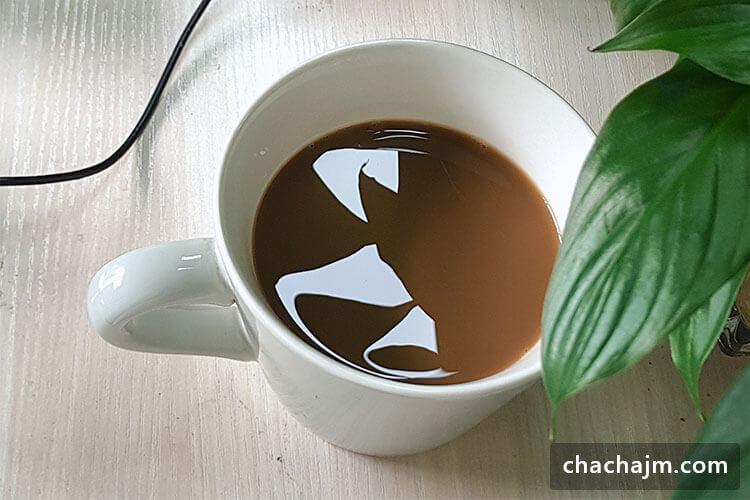 咖啡加盟的品牌有哪些?人气飙升的三家品质咖啡代表,强力推荐!