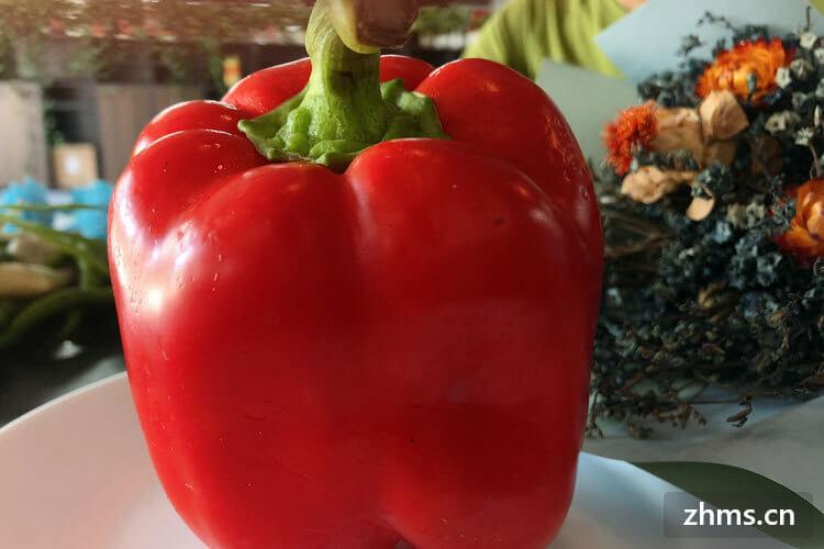 辣椒怎么腌制好吃
