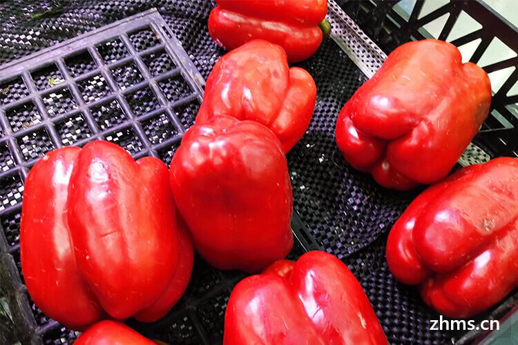 如何挑选柿子椒