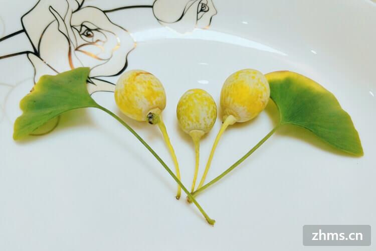 开心果和白果的区别