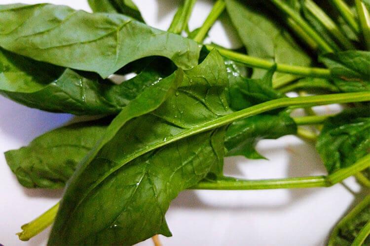 家人喜欢吃菠菜,听说菠菜有很多营养成分,想知道菠菜内含草酸吗