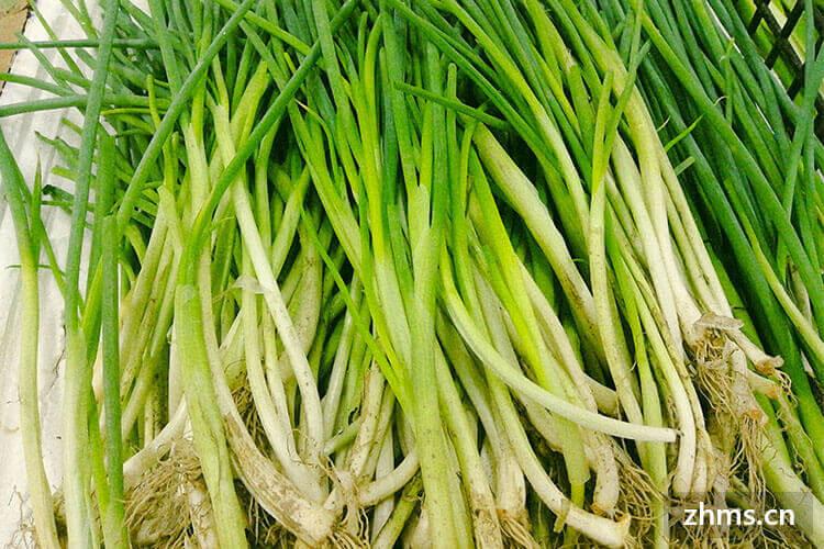 大蔥怎么吃好,讓我告訴你大蔥的家常菜做法