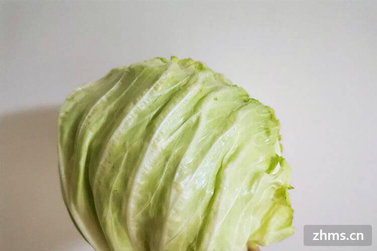 最常见的卷心菜怎么做好吃