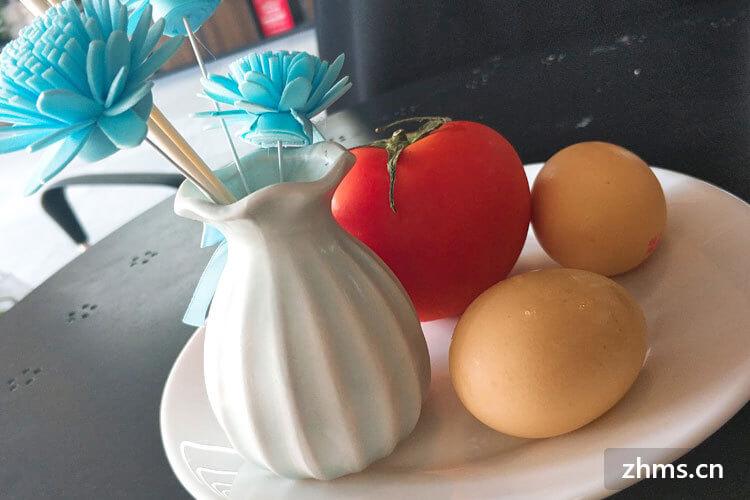 西红柿蛋的多种组合方式