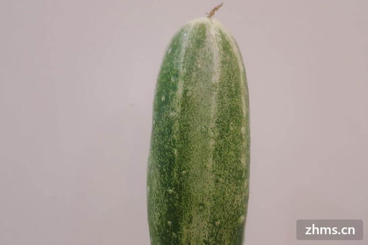 黄瓜营养价值这么高,你真的了解啦吗