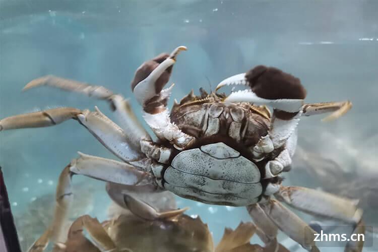 死螃蟹能吃吗