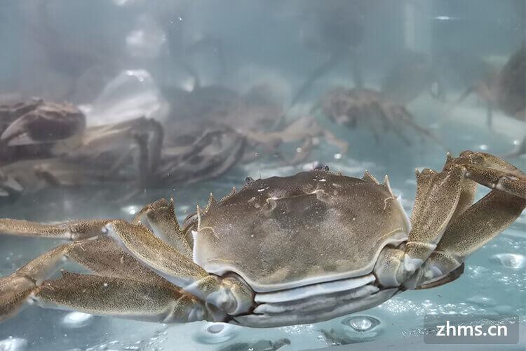什么样的大闸蟹有蟹黄