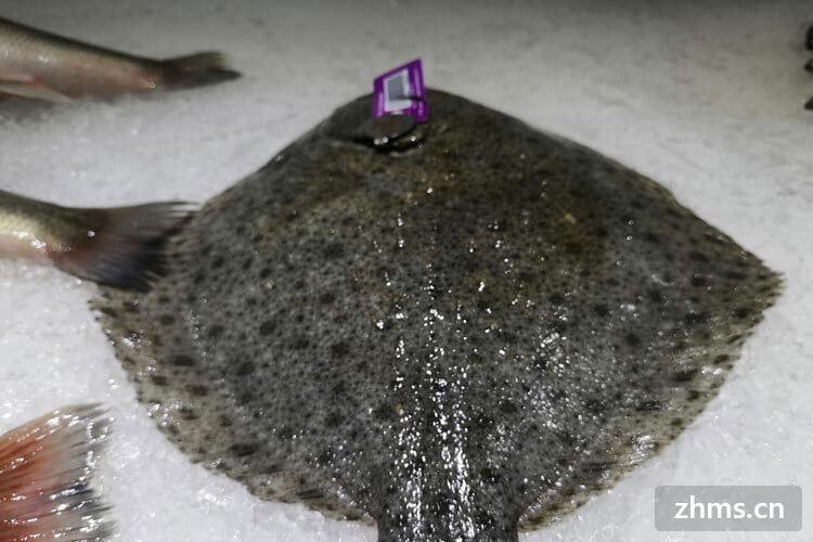 清蒸多宝鱼一般蒸多久