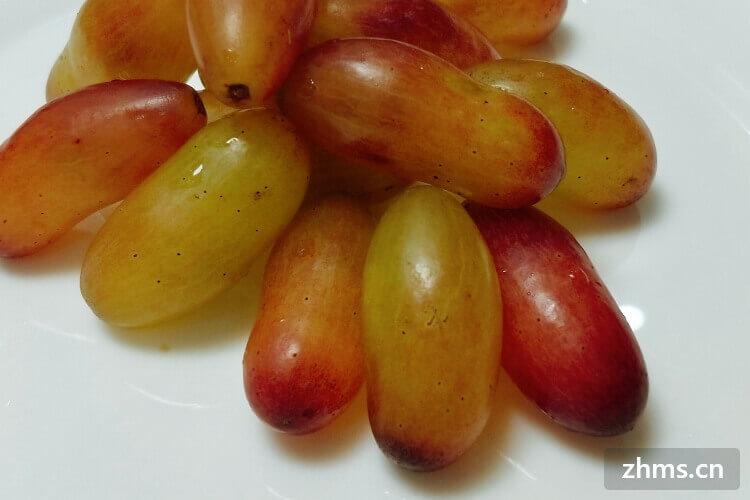 夏黑葡萄有籽吗