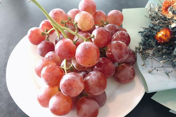 提子葡萄的区别是什么?哪一个更好吃?
