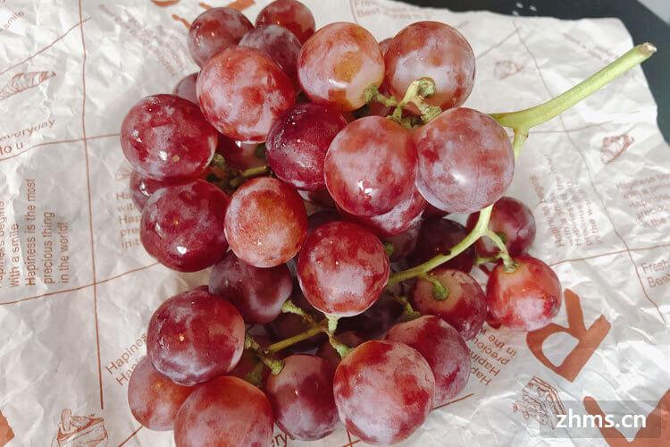 如何挑选好吃的红提葡萄