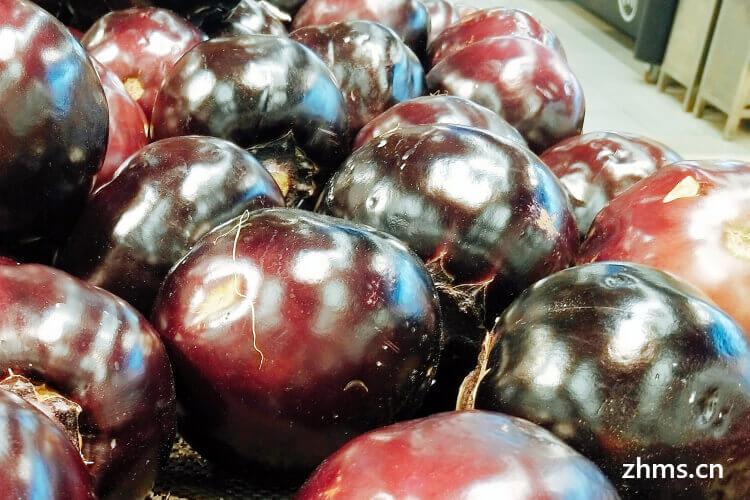 茄子什么季节吃最好
