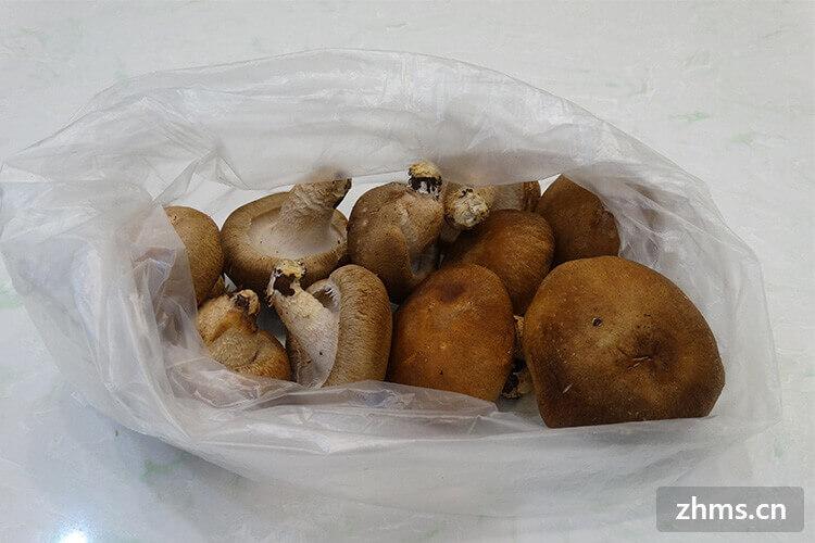 香菇木耳怎么做比較好吃,原來這樣做才美味