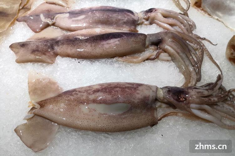 鱿鱼脚煮多久能熟