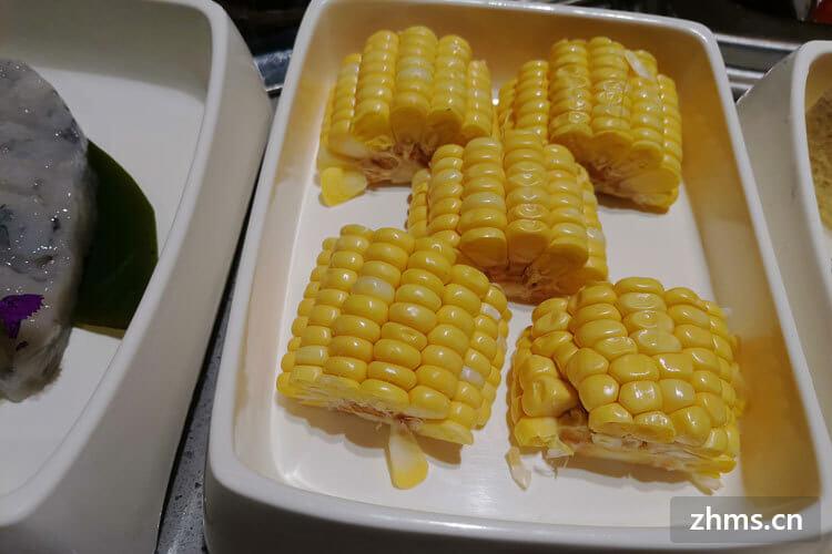 用菜祸蒸玉米要多久