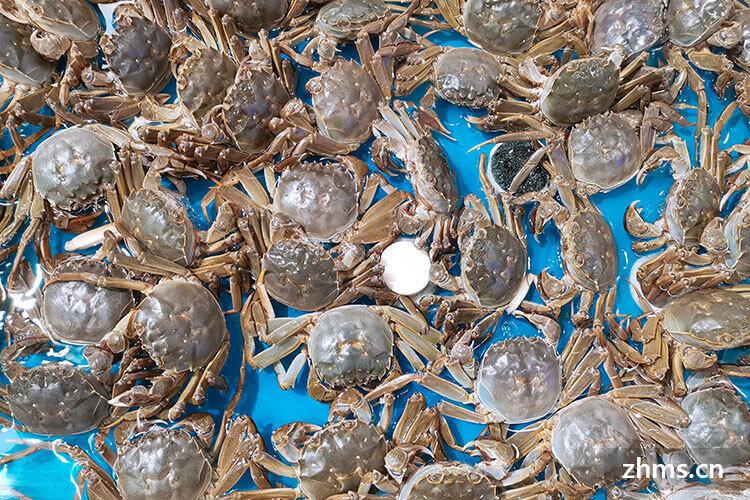 螃蟹的营养价值有哪些