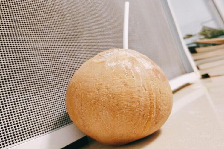 番茄可以跟椰子水混合吗?有知道的朋友吗?