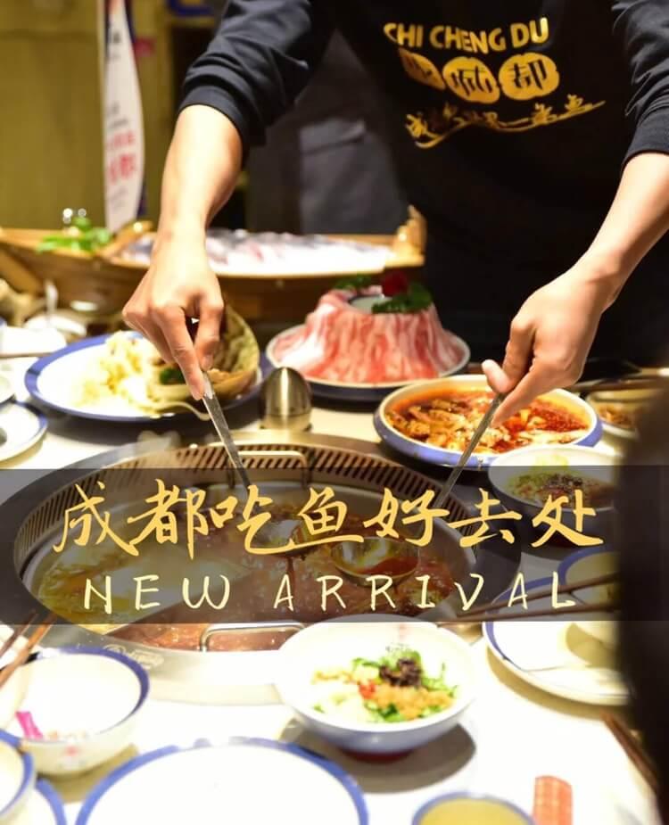 探寻成都首家体验式鱼火锅,吃鱼好去处!