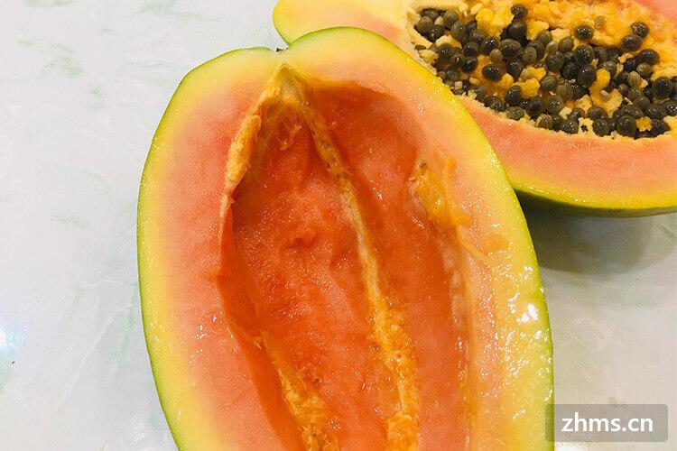 红心木瓜是转基因食品吗?木瓜的生长习性是怎样的?