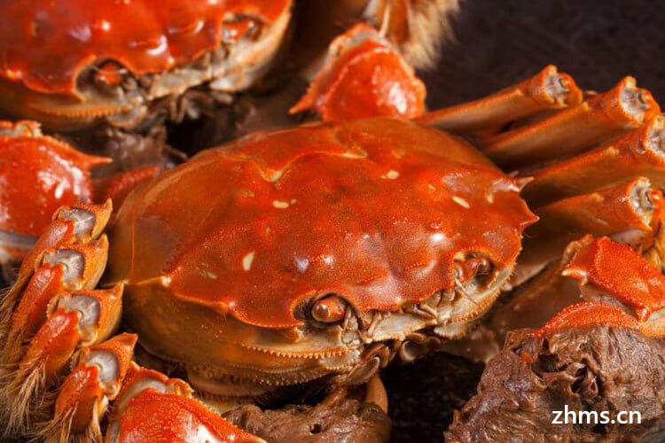 怎么选有蟹膏的螃蟹
