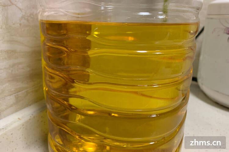 如何辨别地沟油?这些辨别地沟油的方法一定要学会了
