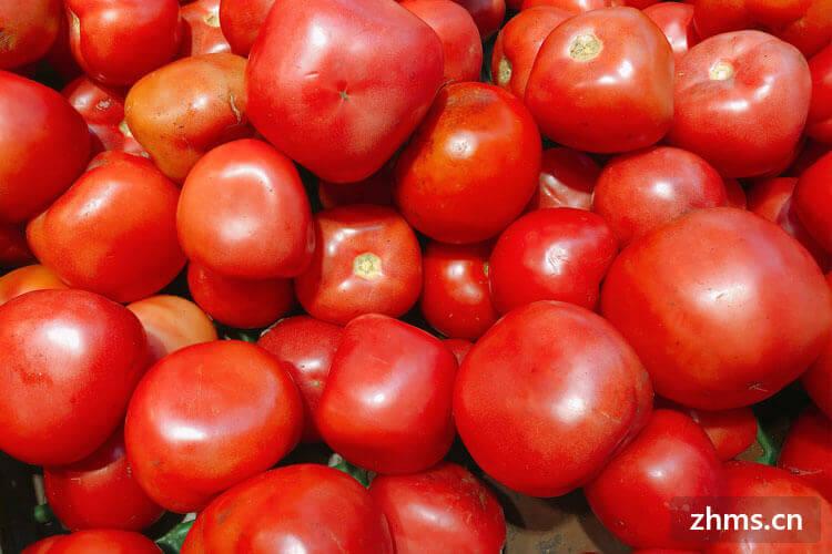 西红柿裂口子怎么回事?是因为在生长的时候出现问题了吗?