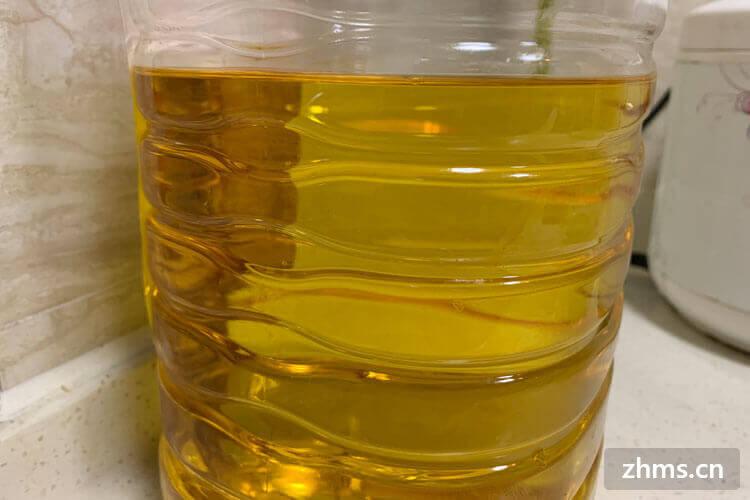 油菜籽油你了解多少,我們為你全面介紹