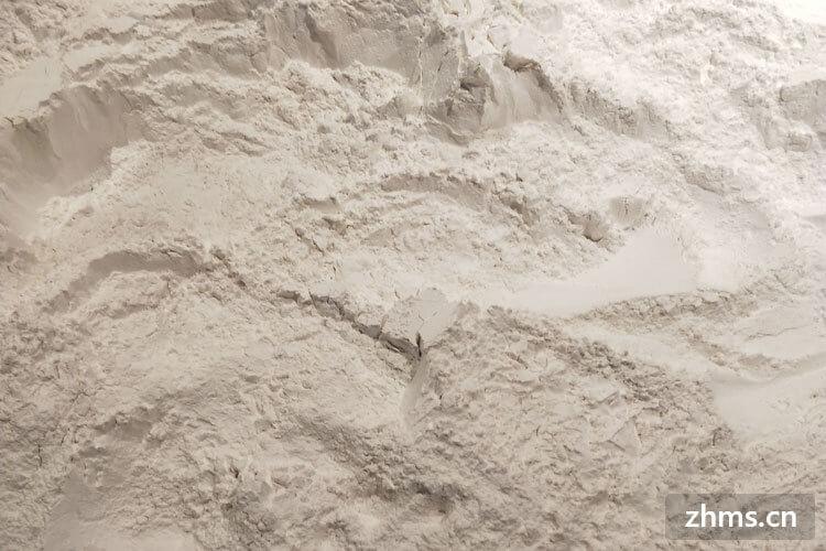 小麦粉能当面粉用吗?小麦粉又可以做哪些食物呢?