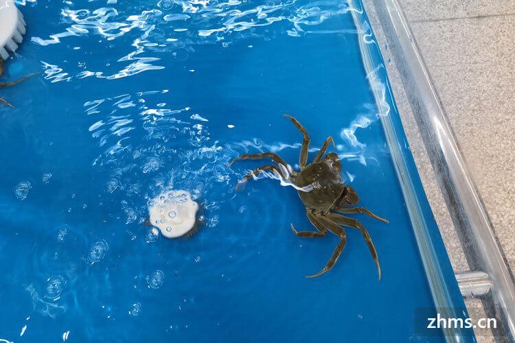 怎么选硬的螃蟹